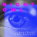 Новый релиз: RoelBeat feat. Annett - Night Owl